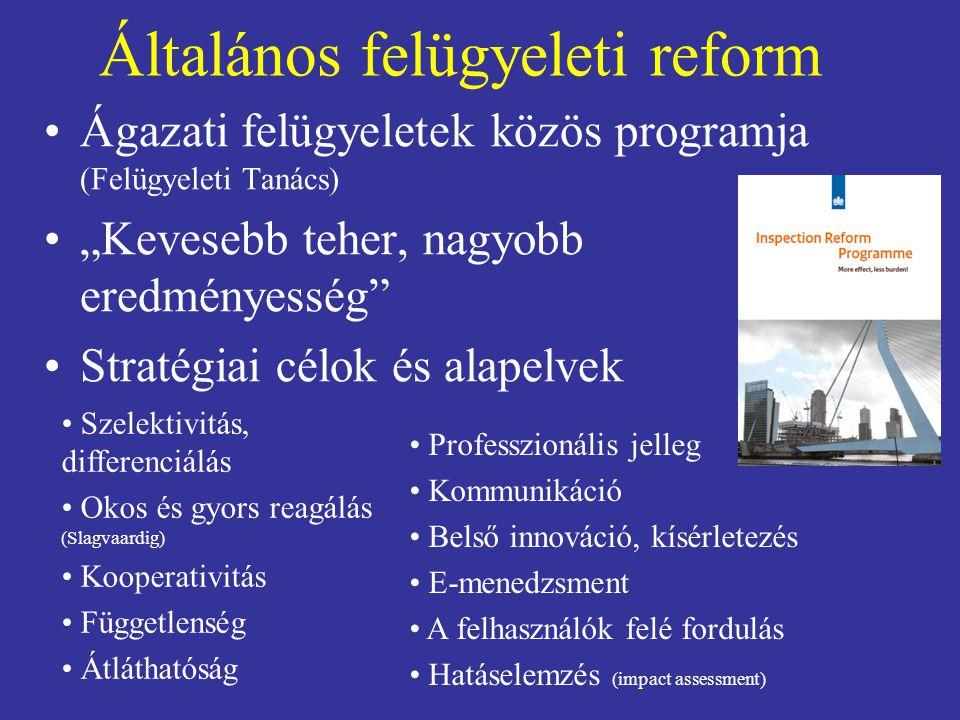 """Általános felügyeleti reform Ágazati felügyeletek közös programja (Felügyeleti Tanács) """"Kevesebb teher, nagyobb eredményesség"""" Stratégiai célok és ala"""