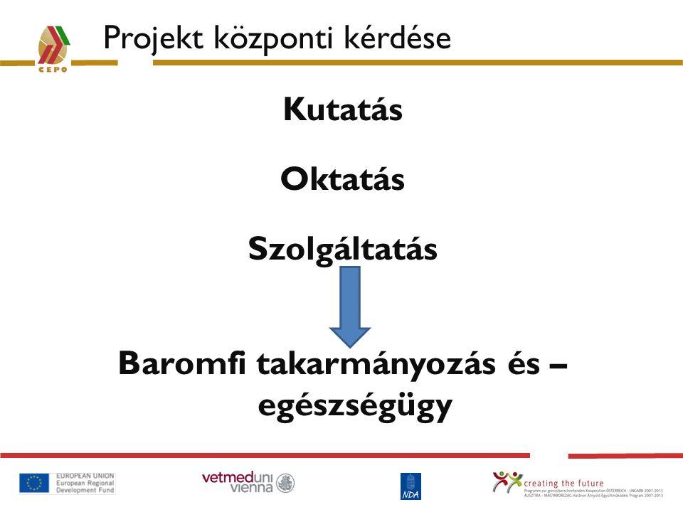 CEPO: Baromfi Kiválósági Központ Összesen 6 munkacsomag: – WP1: Projekt menedzsment A projekt adminisztrációja – WP2: Kommunikáció Szimpóziumok/találkozók az információcsere és az eredmények közvetítése érdekében; www.cepofocus.euwww.cepofocus.eu – WP3: Struktúra Az első osztrák nagyszülőpár telep alapjainak letétele – WP4: Takarmányozás Takarmányadagok optimalizálása a régiós igények figyelembevételével – WP5: Diagnosztika Új eljárások létrehozása fontosabb kórokozók diagnosztizálására – WP6: Csere Diákok és kutatók cseréje