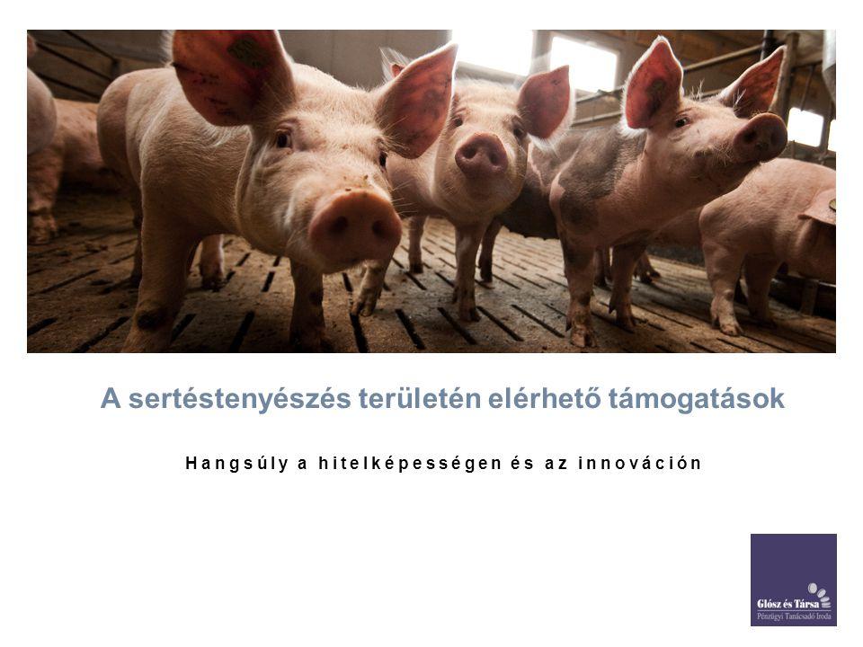 A sertéstenyészés területén elérhető támogatások Hangsúly a hitelképességen és az innováción