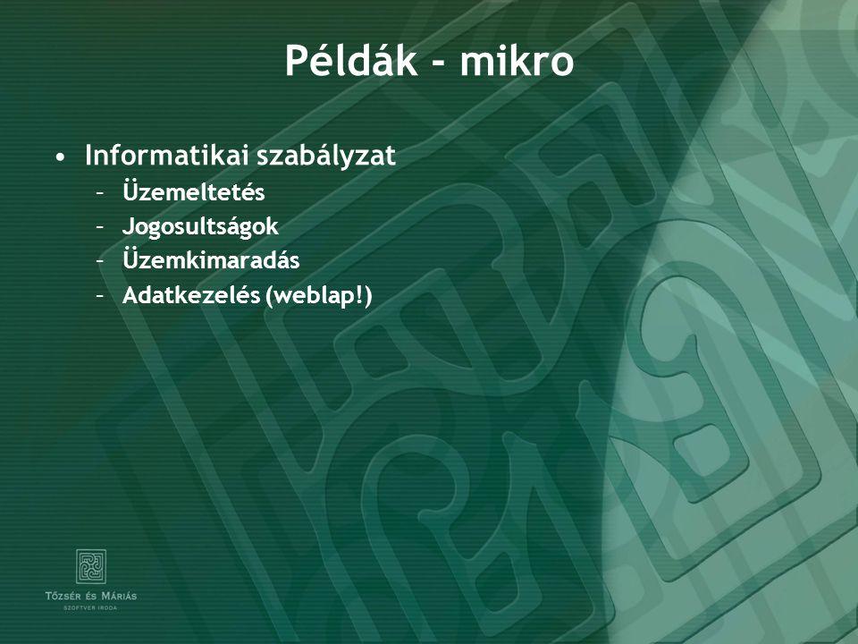 Példák - mikro Informatikai szabályzat –Üzemeltetés –Jogosultságok –Üzemkimaradás –Adatkezelés (weblap!)