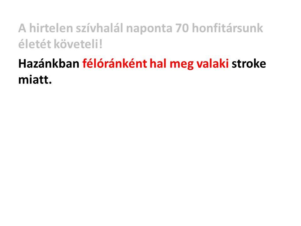 Hazánkban félóránként hal meg valaki stroke miatt.