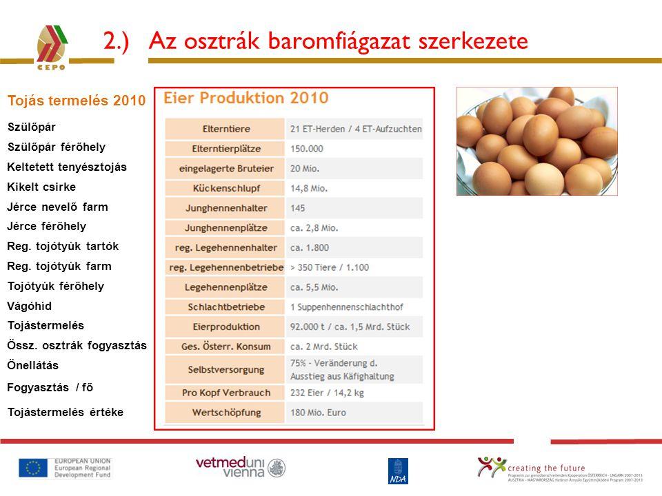 2.) Az osztrák baromfiágazat szerkezete Tojás termelés 2010 Szülőpár Szülőpár férőhely Keltetett tenyésztojás Kikelt csirke Jérce nevelő farm Jérce fé