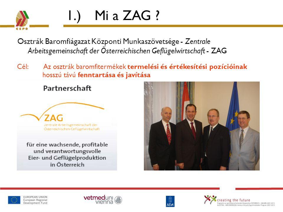 1.) Mi a ZAG ? Osztrák Baromfiágazat Központi Munkaszövetsége - Zentrale Arbeitsgemeinschaft der Österreichischen Geflügelwirtschaft - ZAG Cél: Az osz