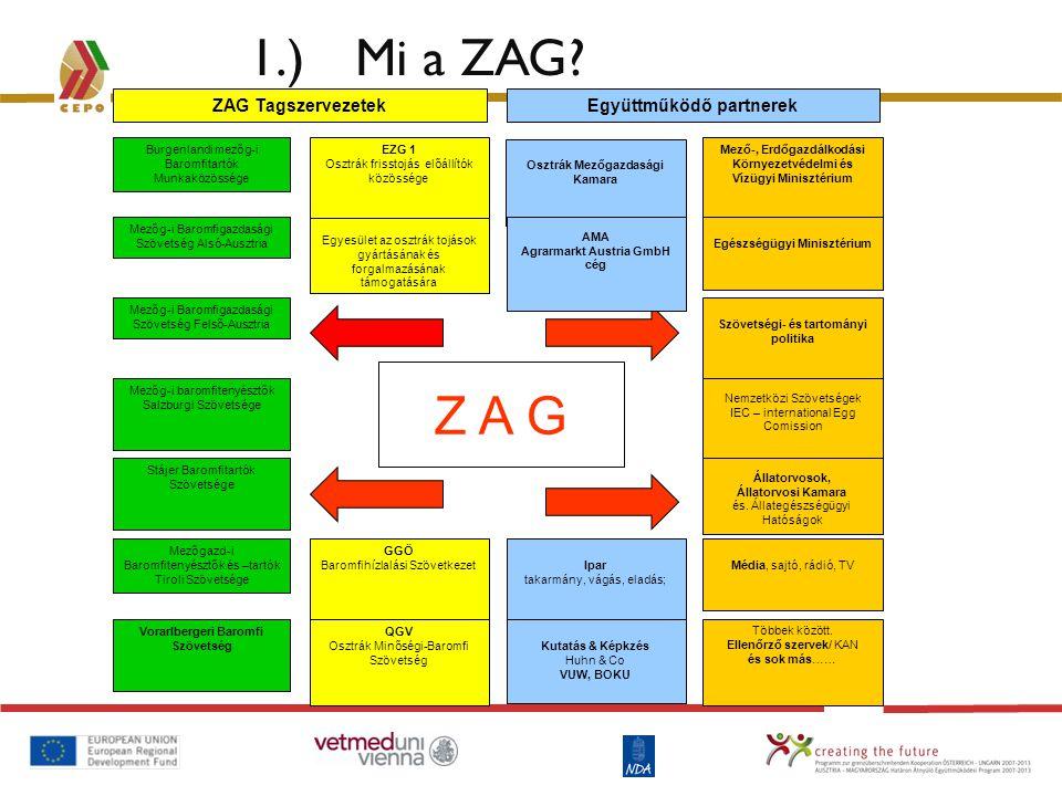 1.) Mi a ZAG? Z A G Mezőg-i Baromfigazdasági Szövetség Felső-Ausztria Mezőg-i baromfitenyésztők Salzburgi Szövetsége Burgenlandi mezőg-i Baromfitartók