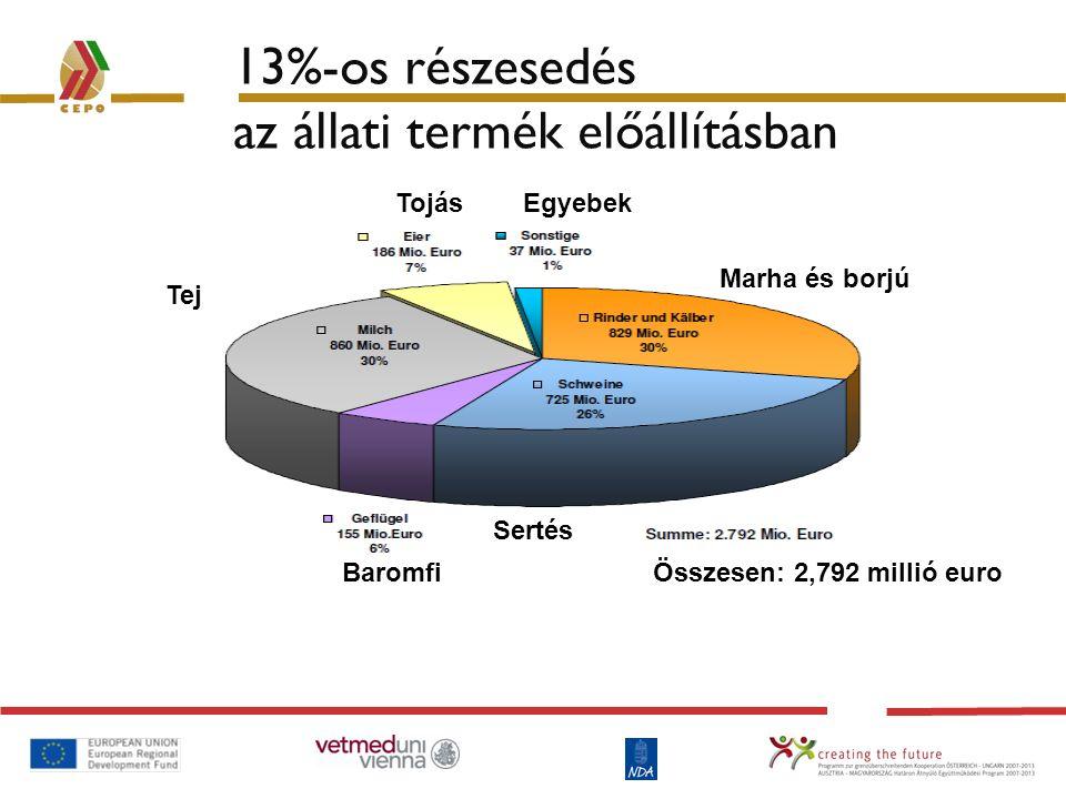 13%-os részesedés az állati termék előállításban Tojás Egyebek Baromfi Tej Marha és borjú Sertés Összesen: 2,792 millió euro