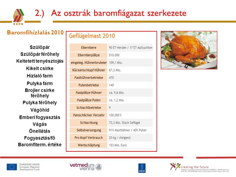 2.) Az osztrák baromfiágazat szerkezete Baromfihízlalás 2010 Szülőpár Szülőpár férőhely Keltetett tenyésztojás Kikelt csirke Hizlaló farm Pulyka farm