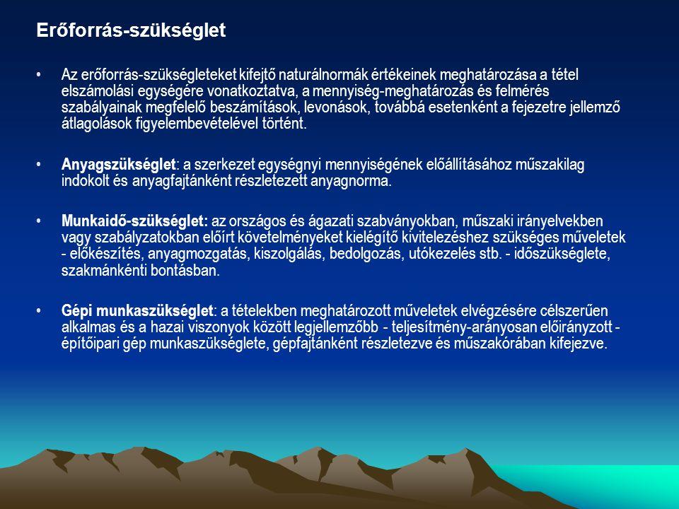 Erőforrás-szükséglet Az erőforrás-szükségleteket kifejtő naturálnormák értékeinek meghatározása a tétel elszámolási egységére vonatkoztatva, a mennyis