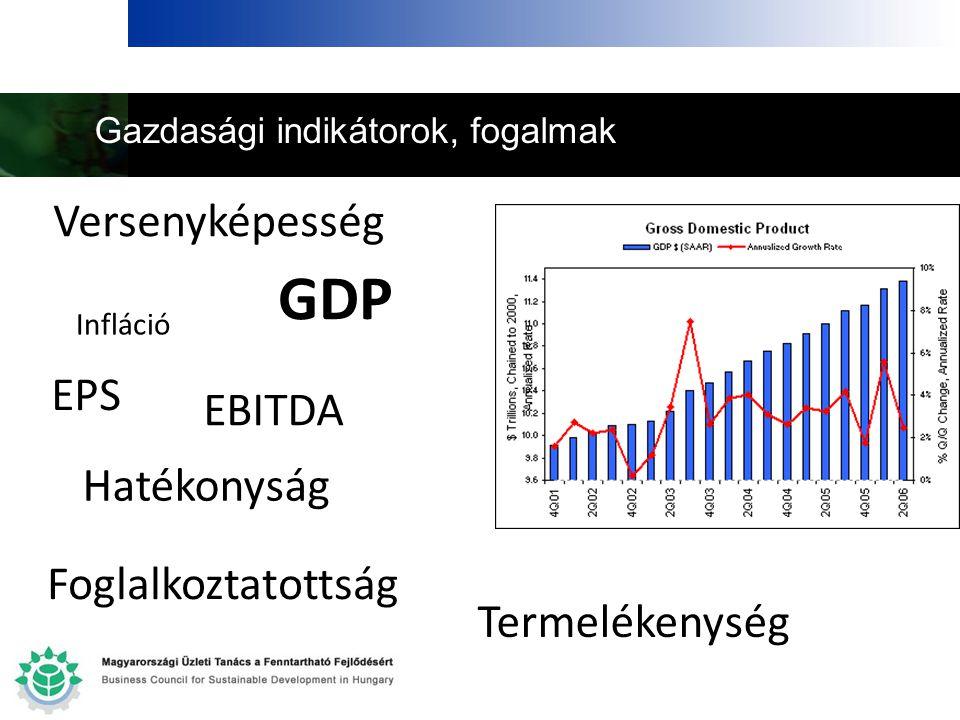Gazdasági indikátorok, fogalmak GDP EPS Versenyképesség EBITDA Termelékenység Hatékonyság Foglalkoztatottság Infláció