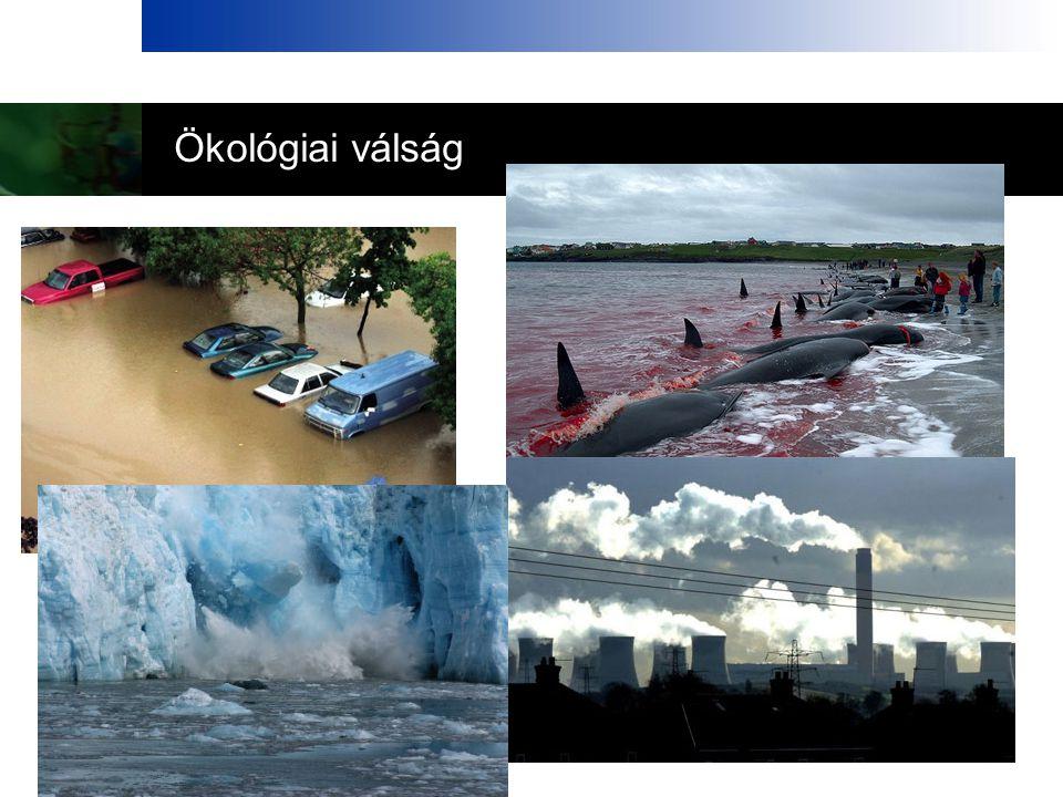 Ökológiai válság