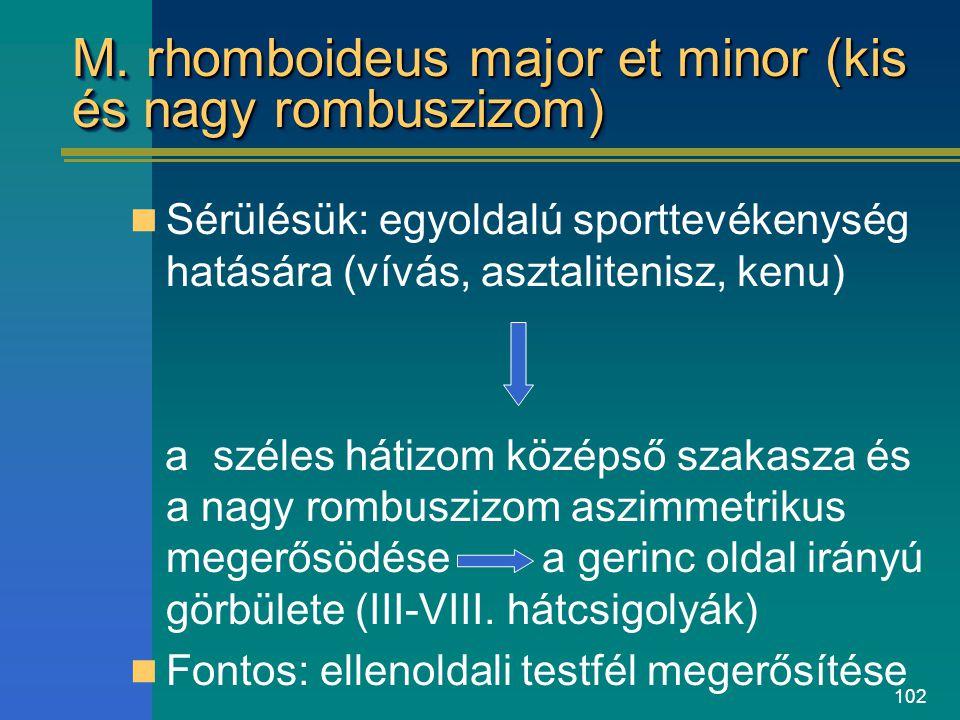 102 M. rhomboideus major et minor (kis és nagy rombuszizom) Sérülésük: egyoldalú sporttevékenység hatására (vívás, asztalitenisz, kenu) a széles hátiz