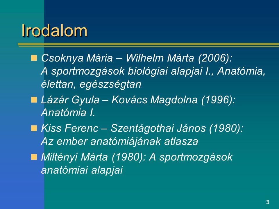 3 IrodalomIrodalom Csoknya Mária – Wilhelm Márta (2006): A sportmozgások biológiai alapjai I., Anatómia, élettan, egészségtan Lázár Gyula – Kovács Mag
