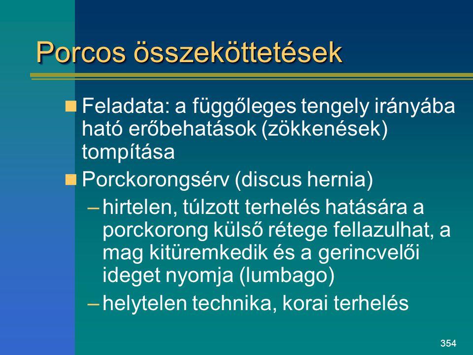 354 Porcos összeköttetések Feladata: a függőleges tengely irányába ható erőbehatások (zökkenések) tompítása Porckorongsérv (discus hernia) –hirtelen,