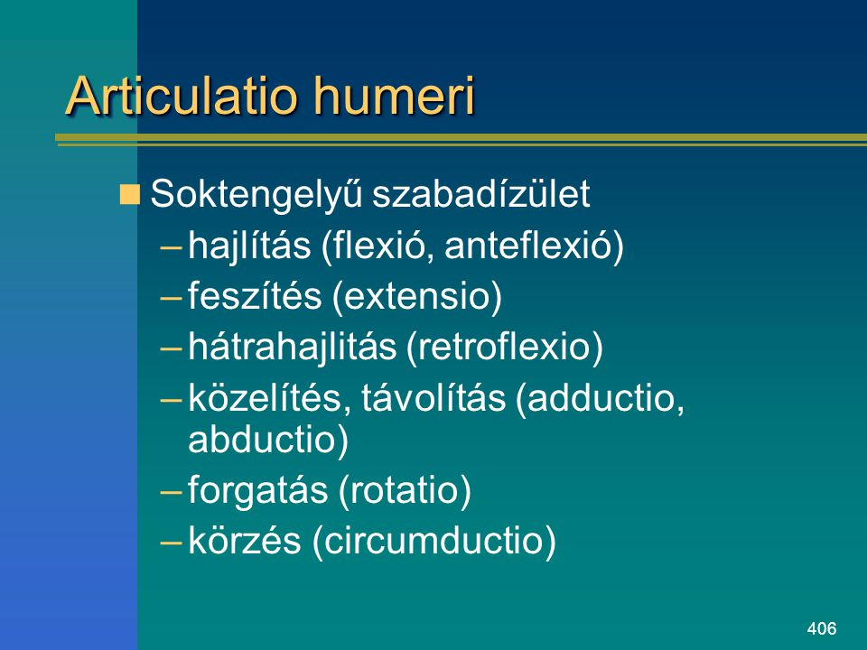 406 Articulatio humeri Soktengelyű szabadízület –hajlítás (flexió, anteflexió) –feszítés (extensio) –hátrahajlitás (retroflexio) –közelítés, távolítás