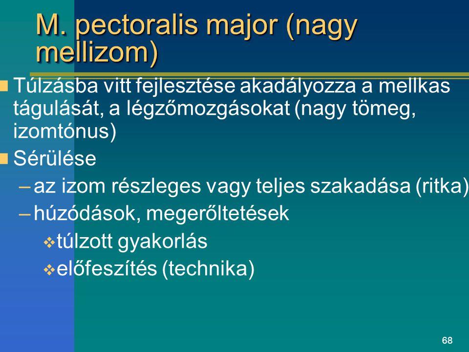 68 M. pectoralis major (nagy mellizom) Túlzásba vitt fejlesztése akadályozza a mellkas tágulását, a légzőmozgásokat (nagy tömeg, izomtónus) Sérülése –