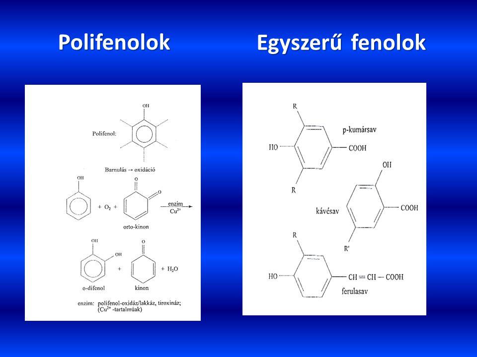 Egyszerű fenolok Polifenolok