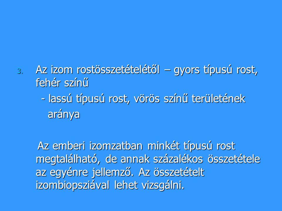 A fehérizom (gyors izomrost): A fehérizom (gyors izomrost): - főleg felületi elhelyezkedésű - működése során az idegimpulzusok sűrűsége kb.