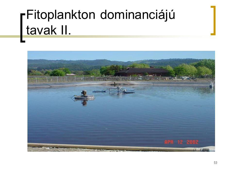 53 Fitoplankton dominanciájú tavak II.