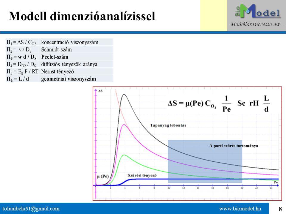 8 Modell dimenzióanalízissel tolnaibela51@gmail.com www.biomodel.hu Modellare necesse est…