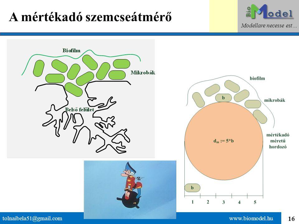 16 A mértékadó szemcseátmérő tolnaibela51@gmail.com www.biomodel.hu Modellare necesse est…