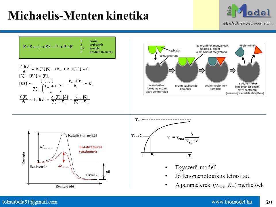 20 Michaelis-Menten kinetika tolnaibela51@gmail.com www.biomodel.hu Modellare necesse est… Egyszerű modell Jó fenomenologikus leírást ad A paraméterek