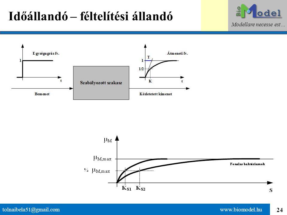 24 Időállandó – féltelítési állandó tolnaibela51@gmail.com www.biomodel.hu Modellare necesse est…