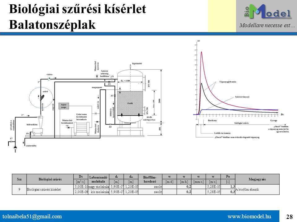 28 Biológiai szűrési kísérlet Balatonszéplak tolnaibela51@gmail.com www.biomodel.hu Modellare necesse est… SszBiológiai szűrés Ds Lebontandó molekula
