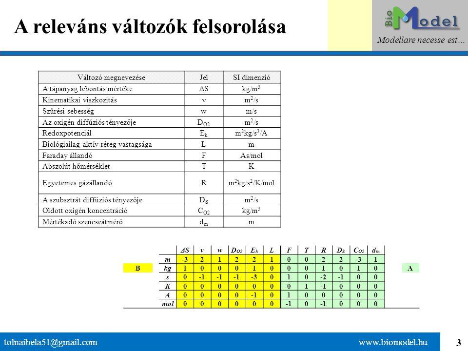 3 A releváns változók felsorolása tolnaibela51@gmail.com www.biomodel.hu Modellare necesse est… ΔSνwD O2 EhEh LFTRDSDS C O2 dmdm m-3212210022 1 Bkg100