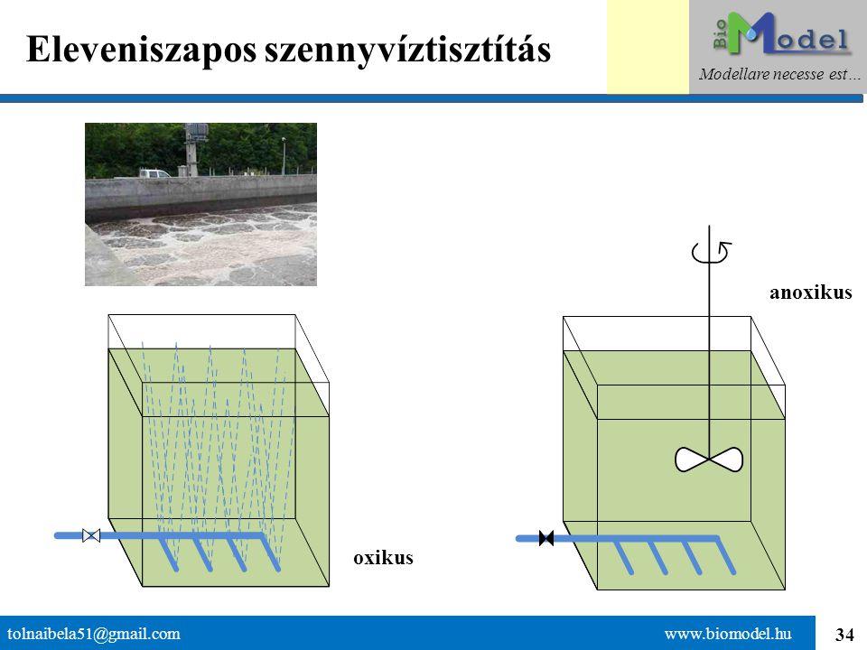 34 Eleveniszapos szennyvíztisztítás tolnaibela51@gmail.com www.biomodel.hu Modellare necesse est… oxikus anoxikus