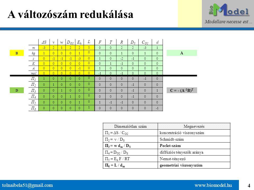 4 A változószám redukálása tolnaibela51@gmail.com www.biomodel.hu Modellare necesse est… ΔSνwD O2 EhEh L FTRDSDS C O2 d m-32122 1 0022 1 B kg10001 0 0