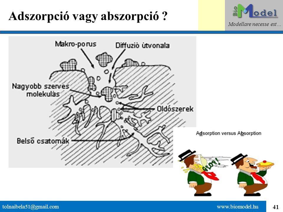 41 Adszorpció vagy abszorpció ? tolnaibela51@gmail.com www.biomodel.hu Modellare necesse est…