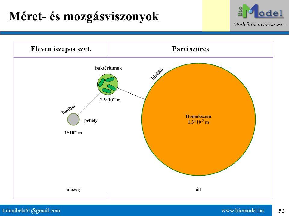 52 Méret- és mozgásviszonyok tolnaibela51@gmail.com www.biomodel.hu Modellare necesse est… Eleven iszapos szvt.Parti szűrés