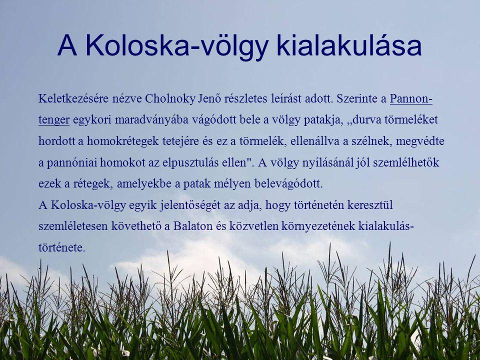 A Koloska-völgy kialakulása Keletkezésére nézve Cholnoky Jenő részletes leírást adott. Szerinte a Pannon- tenger egykori maradványába vágódott bele a