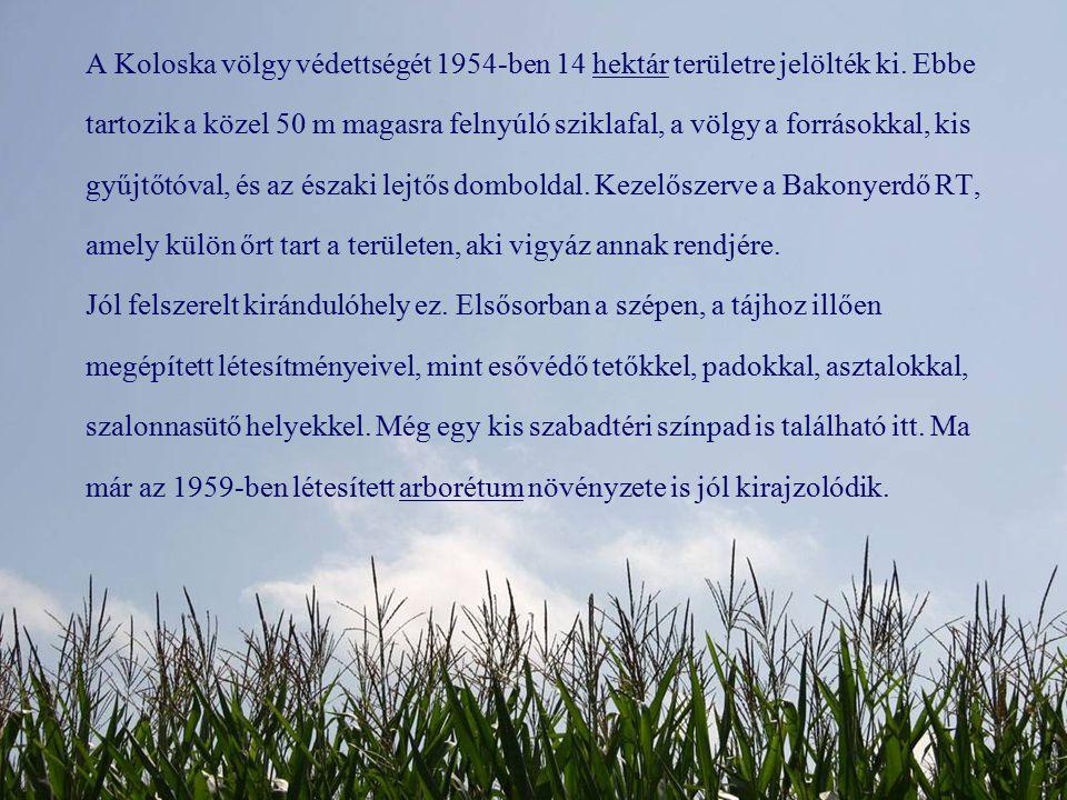 A Koloska völgy védettségét 1954-ben 14 hektár területre jelölték ki. Ebbe tartozik a közel 50 m magasra felnyúló sziklafal, a völgy a forrásokkal, ki