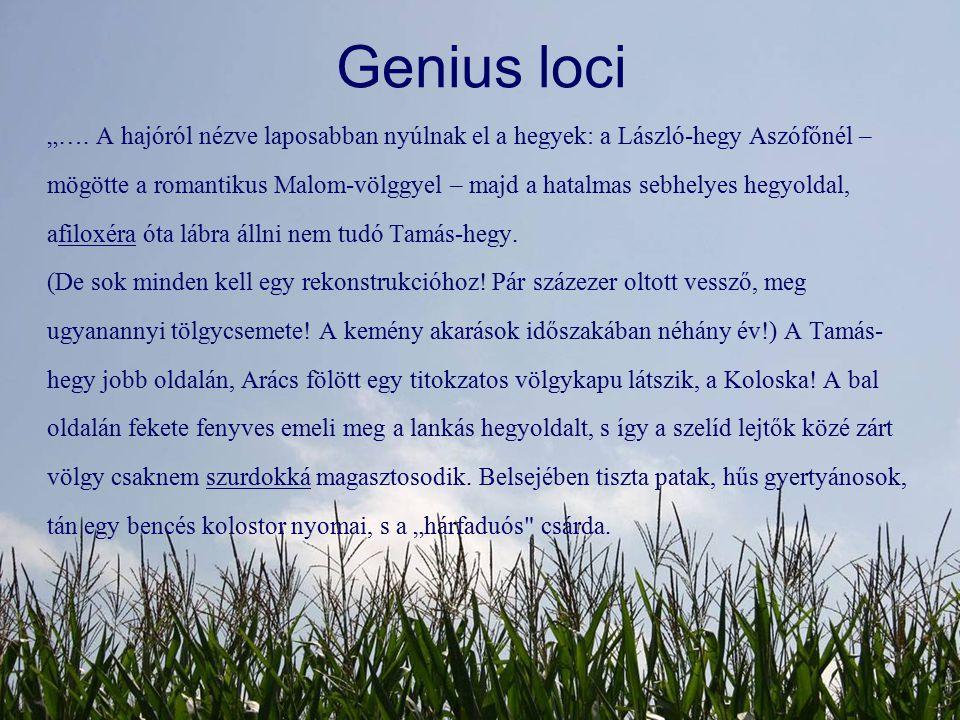 """Genius loci """"…. A hajóról nézve laposabban nyúlnak el a hegyek: a László-hegy Aszófőnél – mögötte a romantikus Malom-völggyel – majd a hatalmas sebhel"""