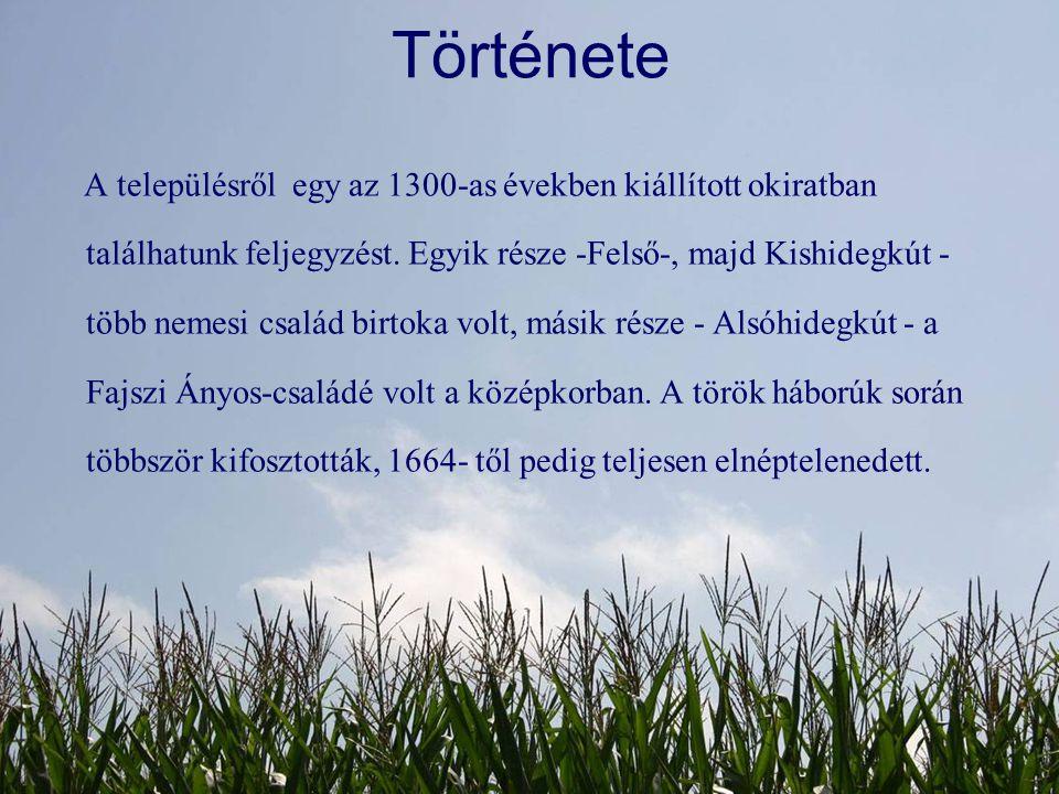 Története A településről egy az 1300-as években kiállított okiratban találhatunk feljegyzést. Egyik része -Felső-, majd Kishidegkút - több nemesi csal