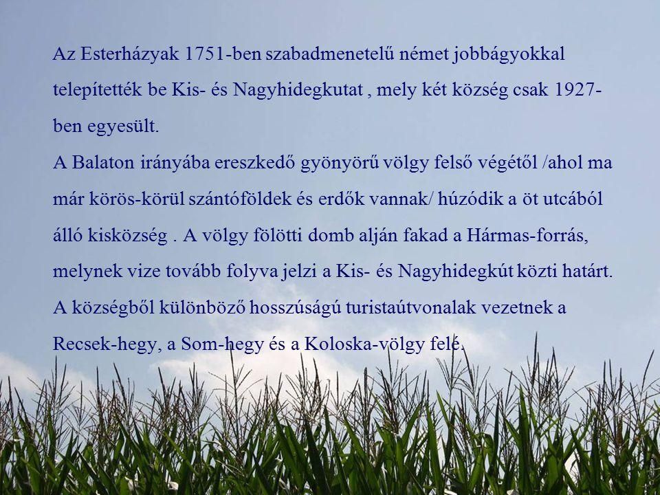A legfiatalabb bevetődés jól látható a Koloska-patak mai völgytalpán.