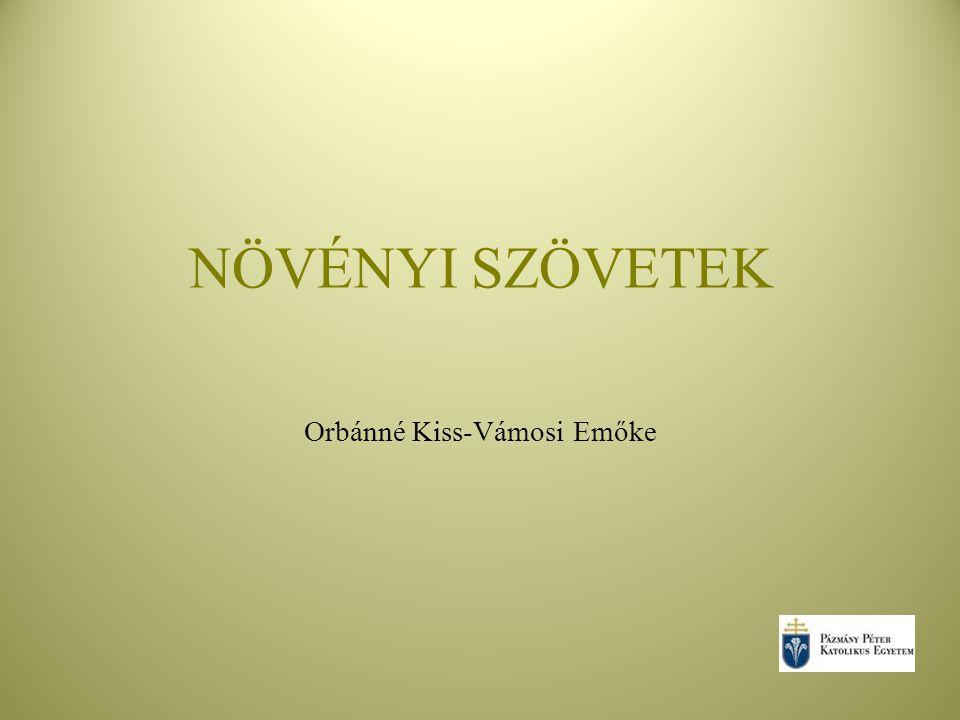 NÖVÉNYI SZÖVETEK Orbánné Kiss-Vámosi Emőke