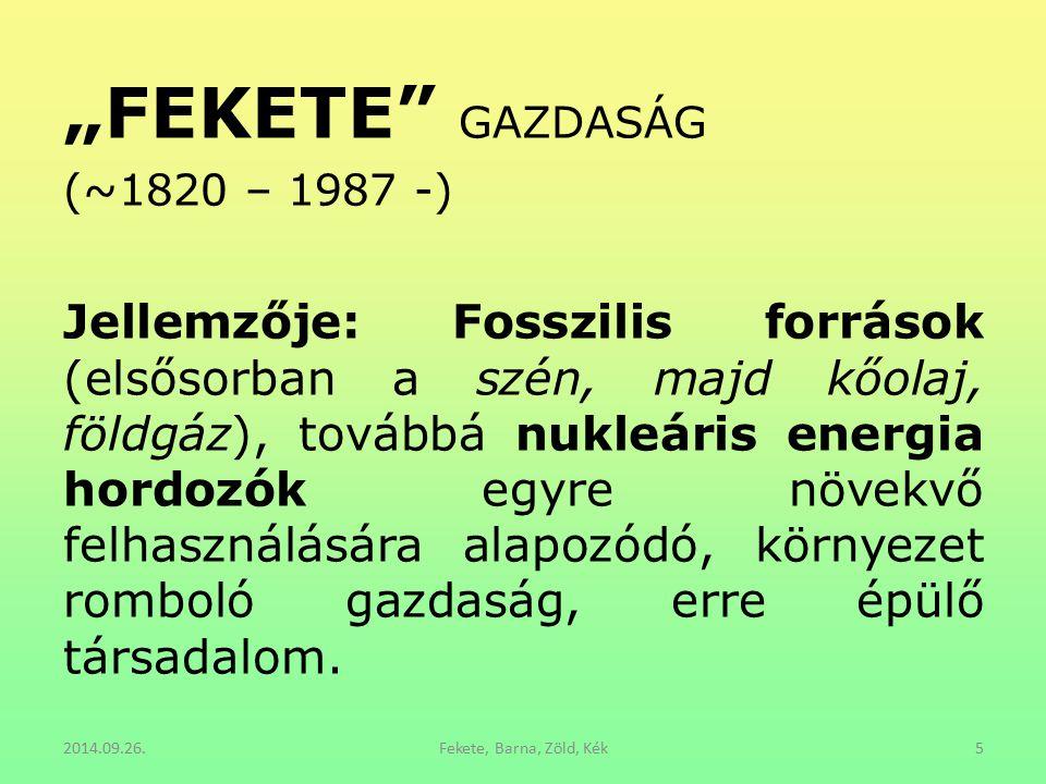 """""""FEKETE"""" GAZDASÁG (~1820 – 1987 -) Jellemzője: Fosszilis források (elsősorban a szén, majd kőolaj, földgáz), továbbá nukleáris energia hordozók egyre"""