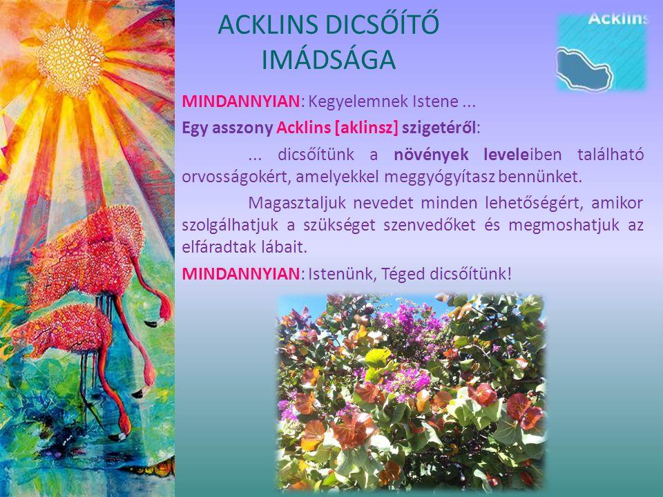 MINDANNYIAN: Kegyelemnek Istene... Egy asszony Acklins [aklinsz] szigetéről:... dicsőítünk a növények leveleiben található orvosságokért, amelyekkel m