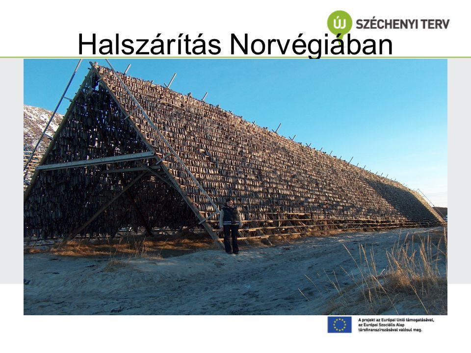 Halszárítás Norvégiában
