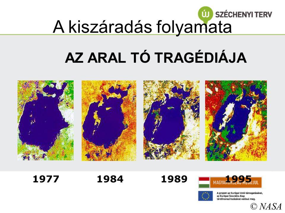 A kiszáradás folyamata 1977 1984 1989 1995 © NASA AZ ARAL TÓ TRAGÉDIÁJA