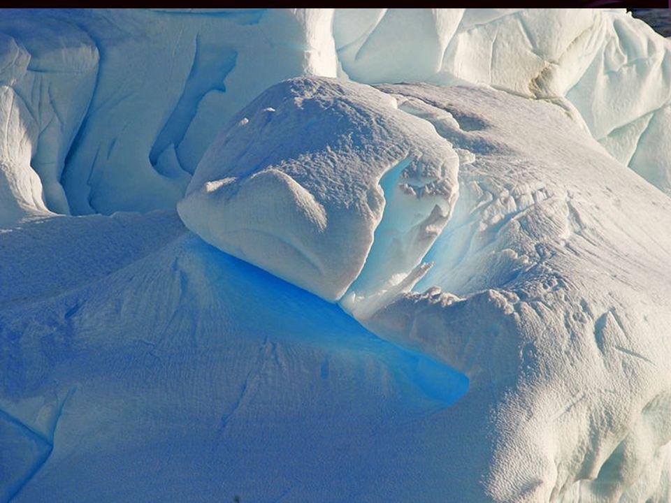 Az Antarktisz (más néven Déli-sarkvidék) a déli szélesség 55. fokától délre fekvő kontinens. Neve a görög ἀ νταρκτικός (antarktikosz) szóból ered, jel