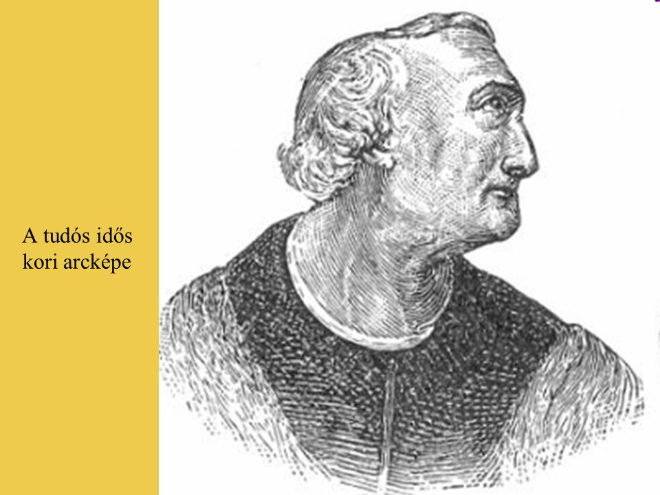 Hogyan lett az Új Világból Amerika? Amerigo Vespucci (ejtsd: veszpuccsi), az olasz származású tengerész és földrajztudós (1452- 1512). megbizonyosodot