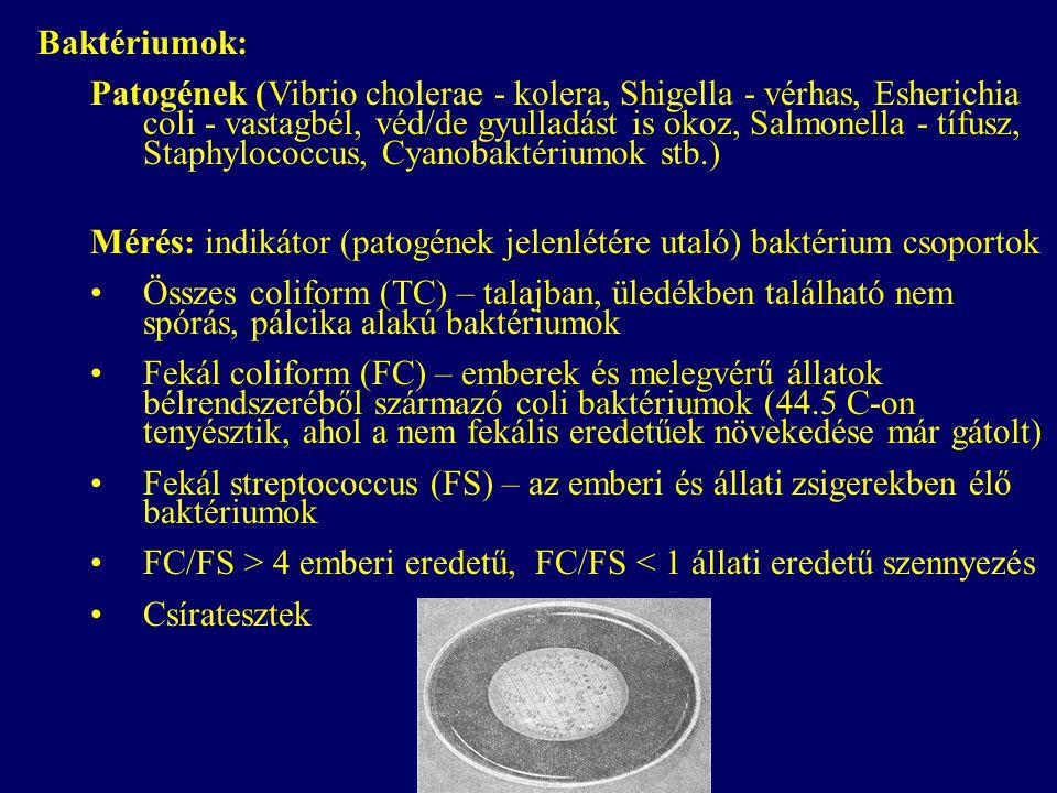 Baktériumok: Patogének (Vibrio cholerae - kolera, Shigella - vérhas, Esherichia coli - vastagbél, véd/de gyulladást is okoz, Salmonella - tífusz, Stap