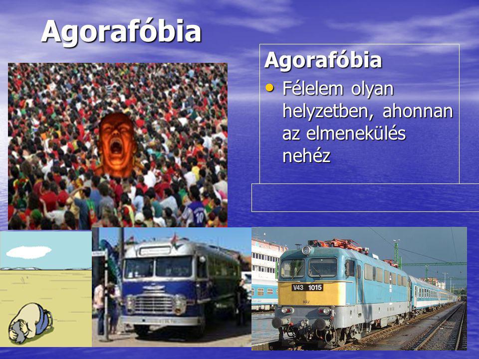 AgorafóbiaAgorafóbia Félelem olyan helyzetben, ahonnan az elmenekülés nehéz Félelem olyan helyzetben, ahonnan az elmenekülés nehéz
