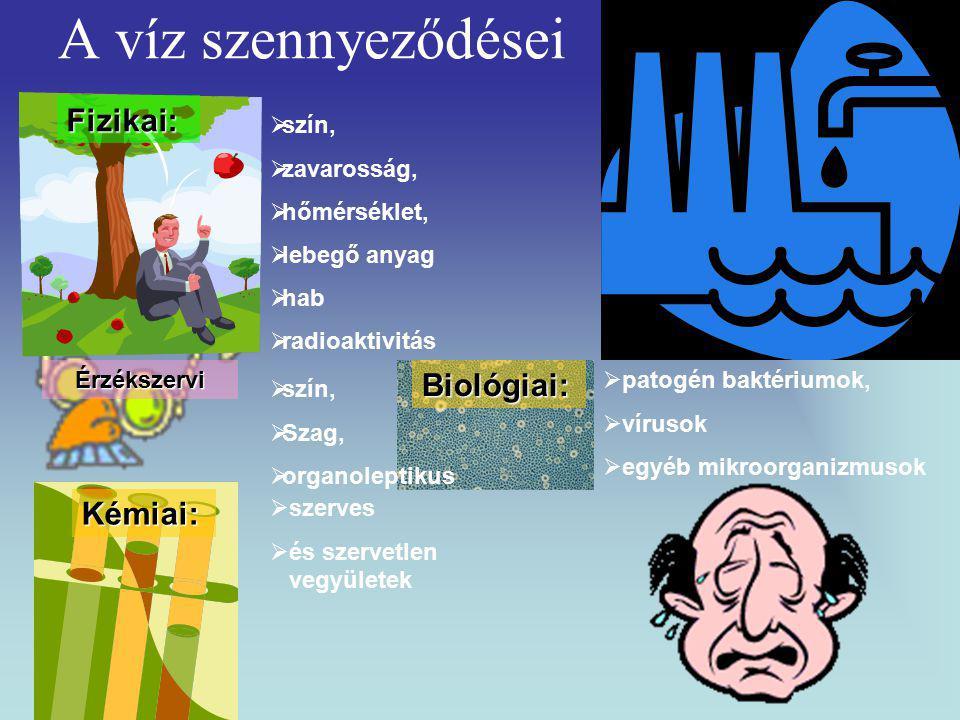 A víz szennyeződéseiFizikai:  szín,  zavarosság,  hőmérséklet,  lebegő anyag  hab  radioaktivitás Érzékszervi  szín,  Szag,  organoleptikus Kémiai:  szerves  és szervetlen vegyületek Biológiai:  patogén baktériumok,  vírusok  egyéb mikroorganizmusok