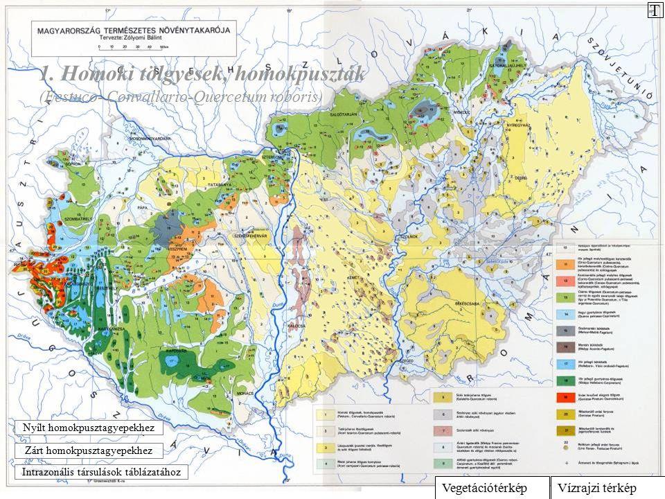 Vízrajzi térképVegetációtérkép 1. Homoki tölgyesek, homokpuszták (Festuco- Convallario-Quercetum roboris) Intrazonális társulások táblázatához Zárt ho