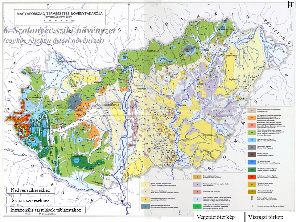 Vízrajzi térképVegetációtérkép 6. Szolonyec sziki növényzet (egykor részben ártéri növényzet) Intrazonális társulások táblázatához Száraz szikesekhez