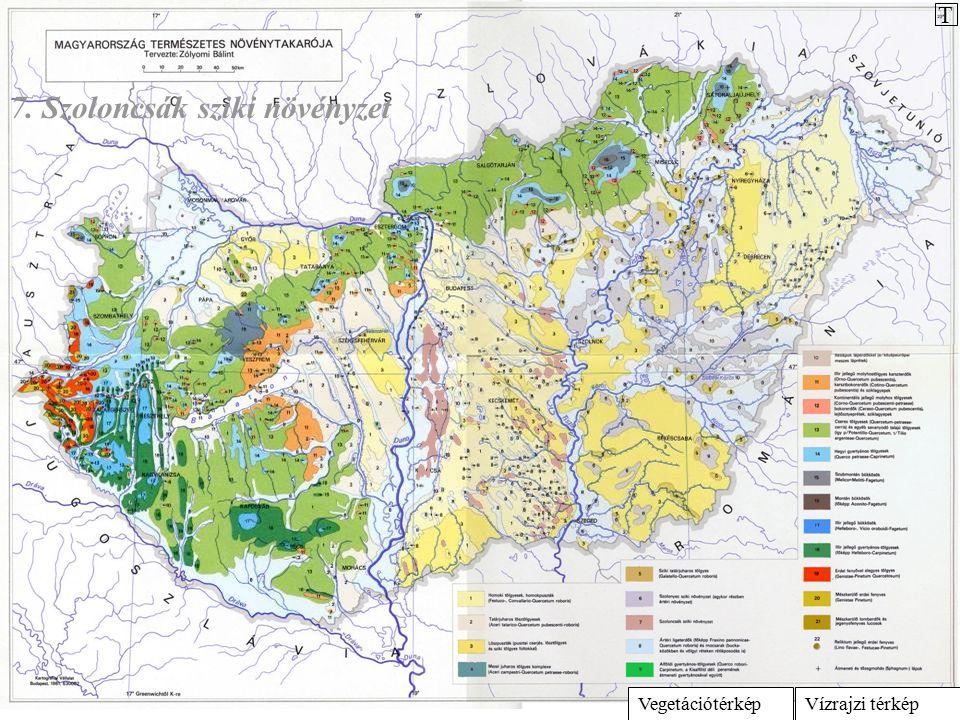 Vízrajzi térképVegetációtérkép 7. Szoloncsák sziki növényzet T