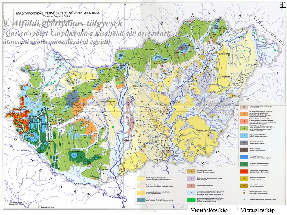 Vízrajzi térképVegetációtérkép 9. Alföldi gyertyános-tölgyesek (Querco-robori-Carpinetum, a Kisalföldi déli peremének átmeneti gyertyánosodásával együ